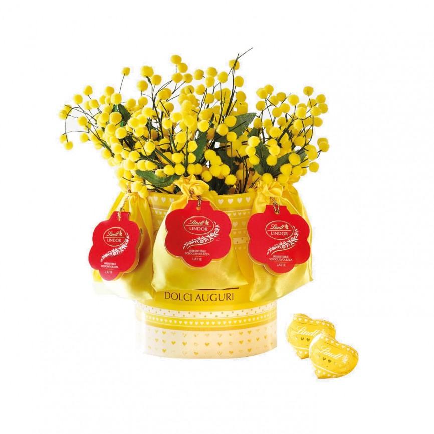 Expo Mimose Lindor
